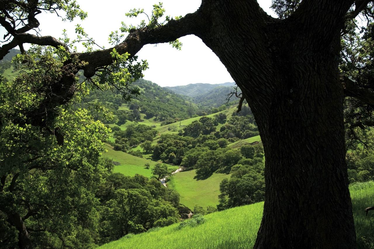sostenibilidad - saint gobain PAM - economía circular - verde