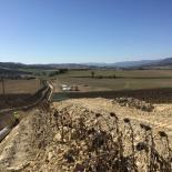 VALLES ALAVESES - RIEGO AGRÍCOLA - SAINT GOBAIN PAM - IRRIGAL